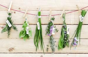 Låt trädgården bli din oas 11